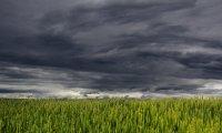 Thunderstorm All Around