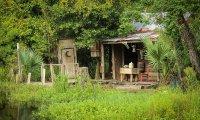 Cajun Cabin in the Swamp