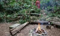 Tabaxi Jungle Camp