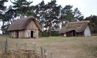 Rural Farm ambient sounds