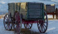 Travel by horse cart