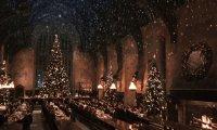 Hogwarts Great Hall Christmas