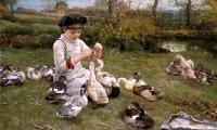 Ever tried feeding the ducks?