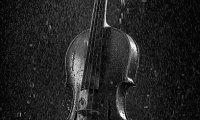 Rain and Violin