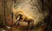 The Unicorn's Domain