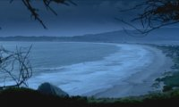 Sounds of Antonio Bay, CA