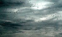 Clair de Lune in the Rain
