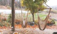 Autumn in Apple Hill
