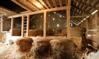 Ravenpaw and Barley's Barn