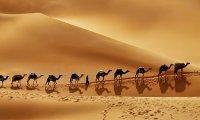 Arabian Sounds