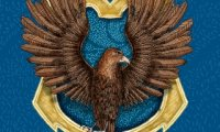 Study with the ravenclaws!