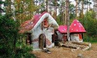 Agaricus's Mushroom